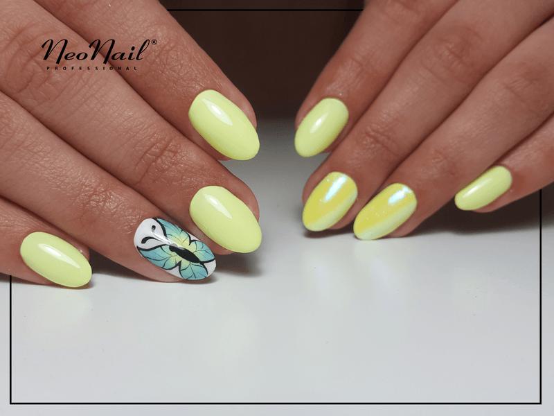 Malowany motyl