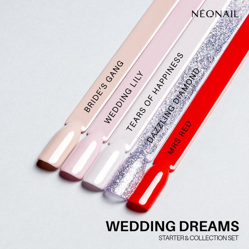 Wedding Dreams Collection Set