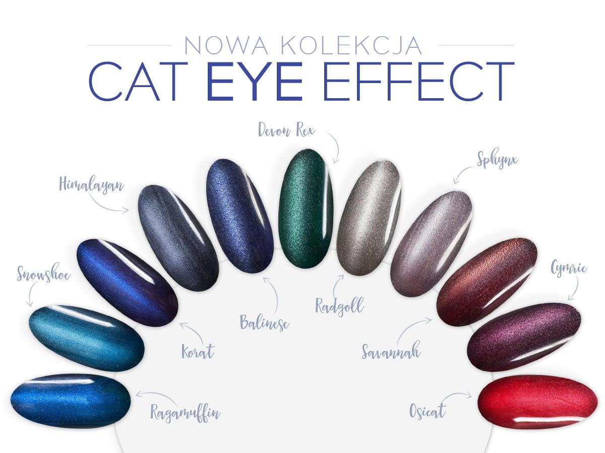 Cat Eye Effect Czyli Efekt Kociego Oka Na Paznokciach Neonail