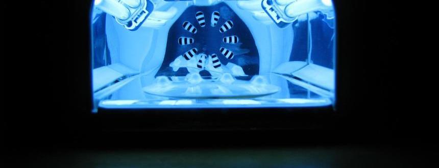 Problem każdej stylistki paznokci - czyli jak doczyścić lampę UV?